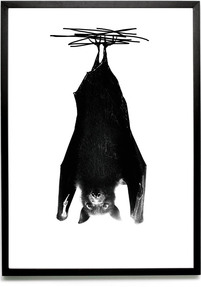 Bat print {Exclusive}